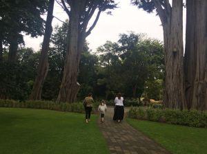 InverBigTrees