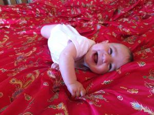 Happy as a bug in a rug in Matakana